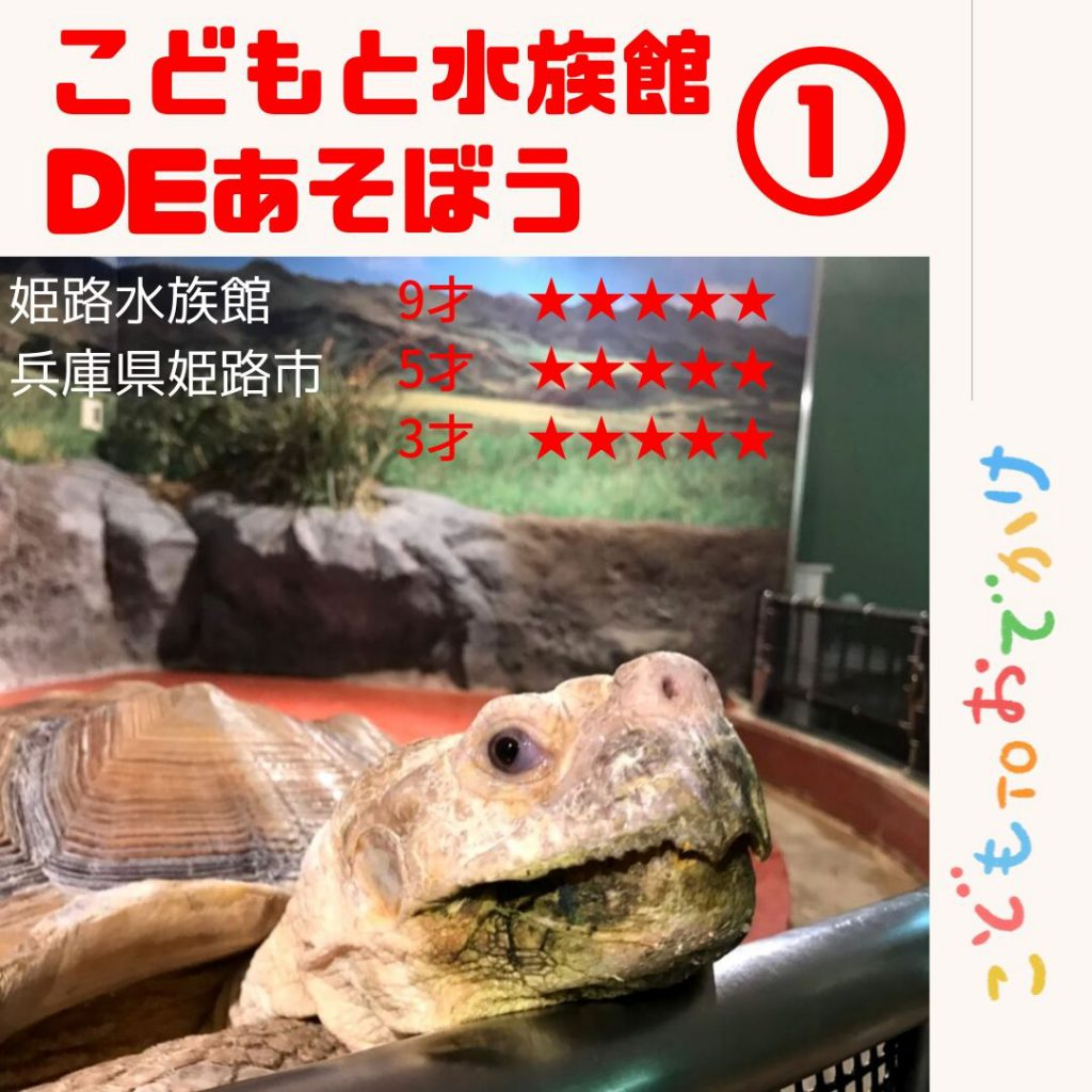 姫路市立水族館であそぼう