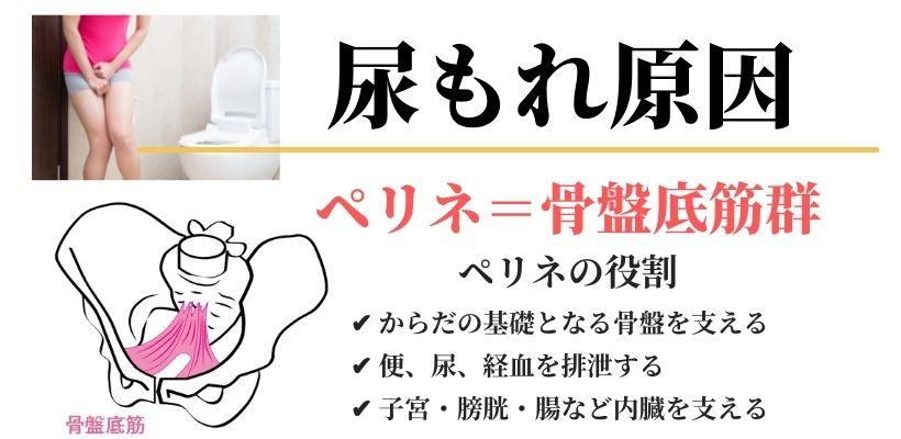 尿もれの原因 ペリネ