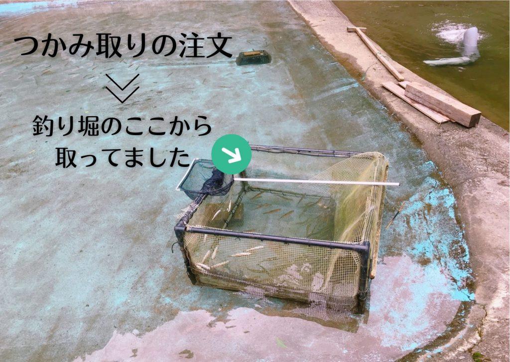宍粟市 つかみどり 楽水フィッシングセンター 釣り堀